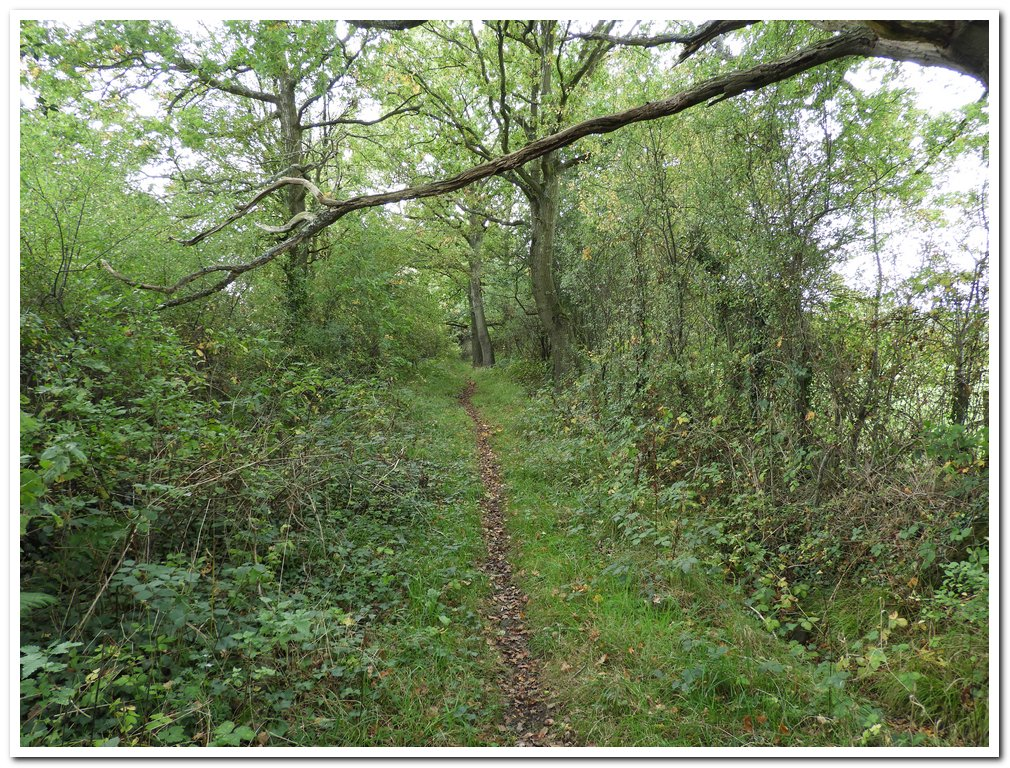 Cromhall footpath